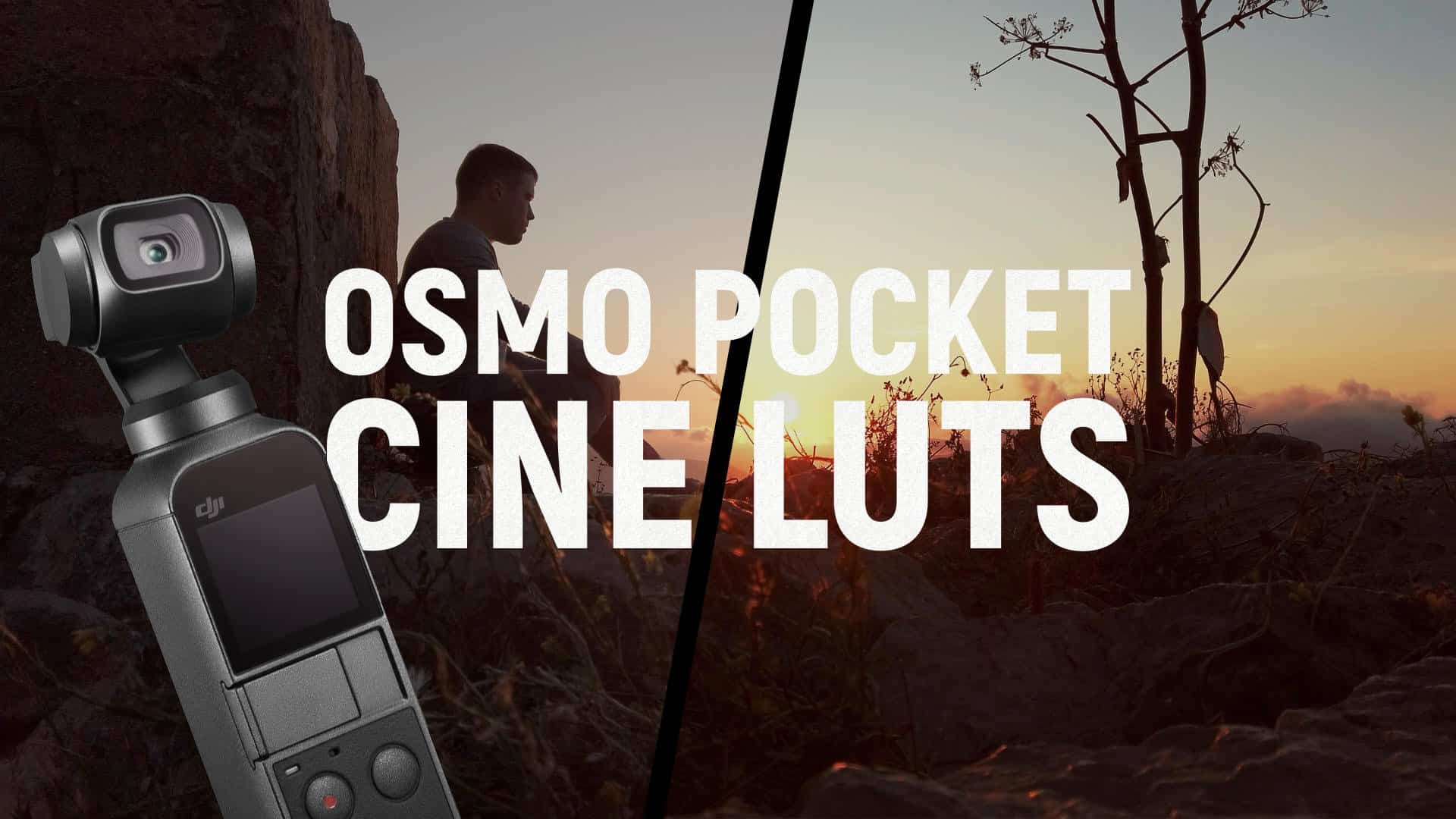 Osmo Pocket Cine LUTs